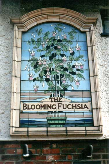 Ipswich Historic Lettering: Blooming Fuchsia 2002
