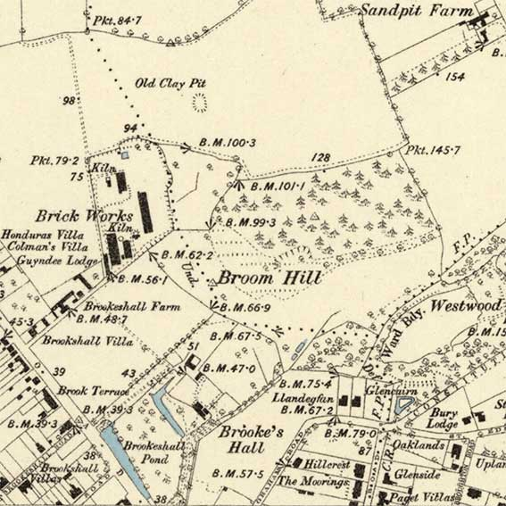 Ipswich Historic Lettering: Brookes Hall brickworks map 1884