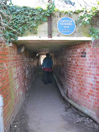 Ipswich Historic Lettering: Needham Cattle Tunnel 1