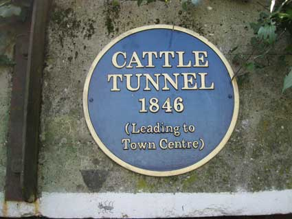 Ipswich Historic Lettering: Needham Cattle Tunnel 2