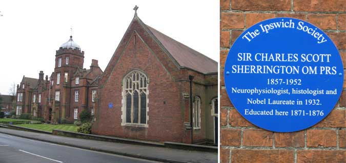 Ipswich Historic Lettering: Charles Sherrington plaque